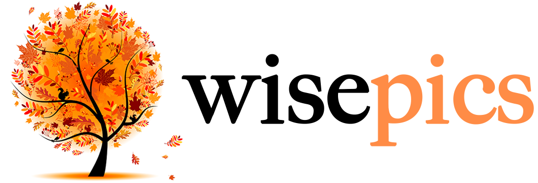 wisepics